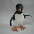Penguin・ペンギン
