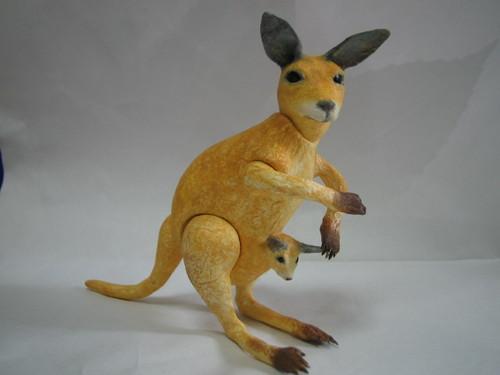 kangaroo・カンガルー