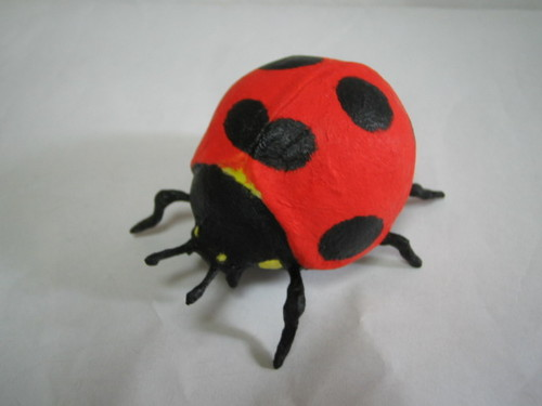 Ladybug・テントウムシ