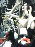 2007年11月デザフェス