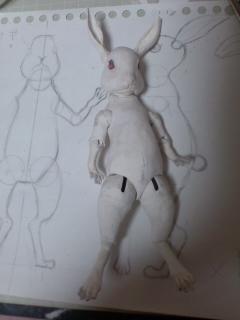 ウサギって前足が短いものだろう?