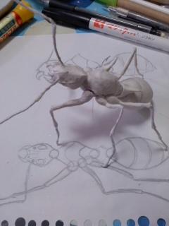 蟻・仮組み